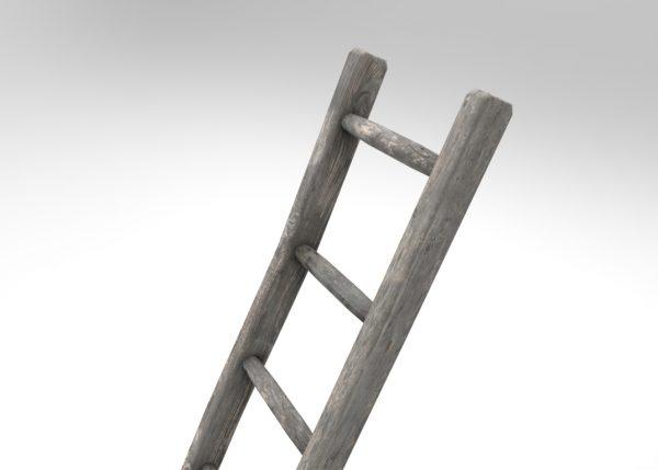 Wooden_Ladder_01.126