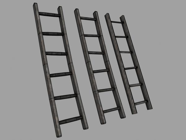 Wooden_Ladder_01_wos_capture